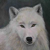Weißer Wolf